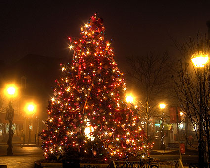 Historic Annapolis Harbor's Christmas Tree, Very Early on a Very Foggy Morning
